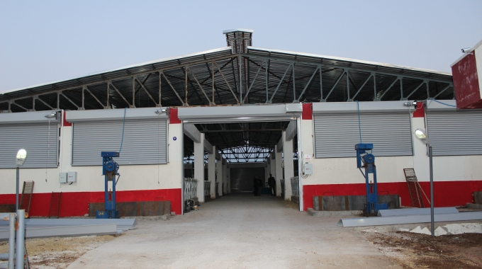 Hibeli 50 Başlık Süt Sığırcılığı Projesi İnşaatı Maliyeti Fiyatları