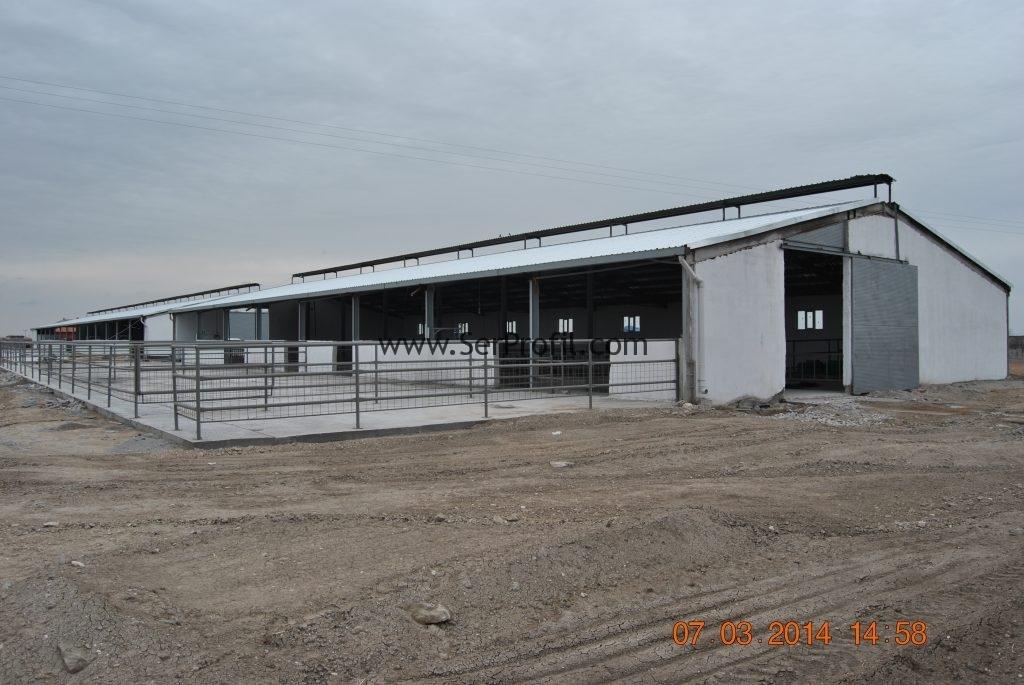 örnek Tkdk Kırsal Kalkınma Dap Besi çiftliği Projeleri Ve Yapım