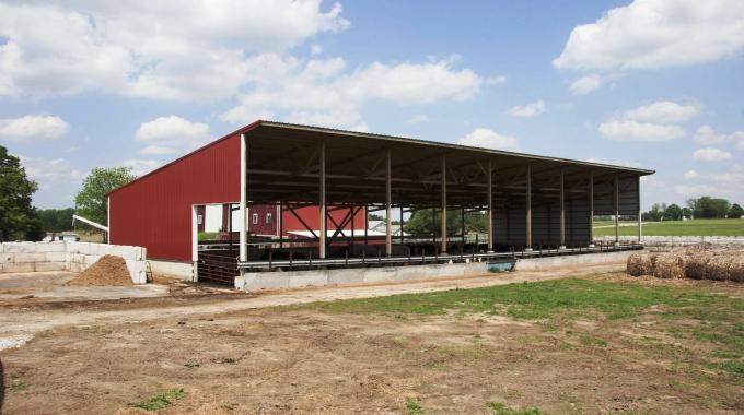 10-100 Başlık Süt Sığırcılığı Projesi ve Uygulama Fiyatları