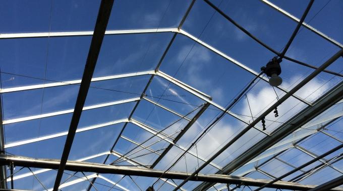 1 Dönüm Polikarbon Cam Naylon Sera Boyutları Ölçüleri Projeleri Yapım Fiyatları