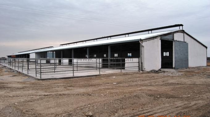 1.000 Kapasiteli Tavuk Çiftliği, 500 Tavukluk Kümes Proje ve Yapım Maliyeti