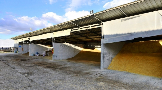 100 Başlık Süt ve Besi Sığırcılığı Projeleri Anahtar Teslim Ahır Çiftlik Maliyeti