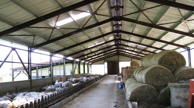 Koyun Ağılı Maliyetleri, Küçükbaş Hayvan Çiftliği Projeleri Fiyatları