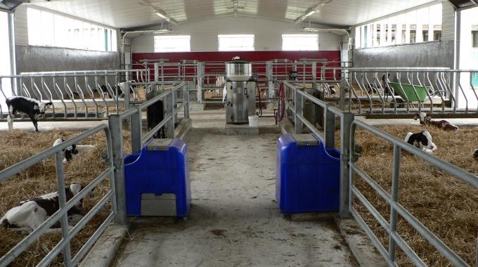 Büyükbaş Hayvan Ahırları Maliyeti, Büyükbaş Hayvan Çiftliği Fiyatları