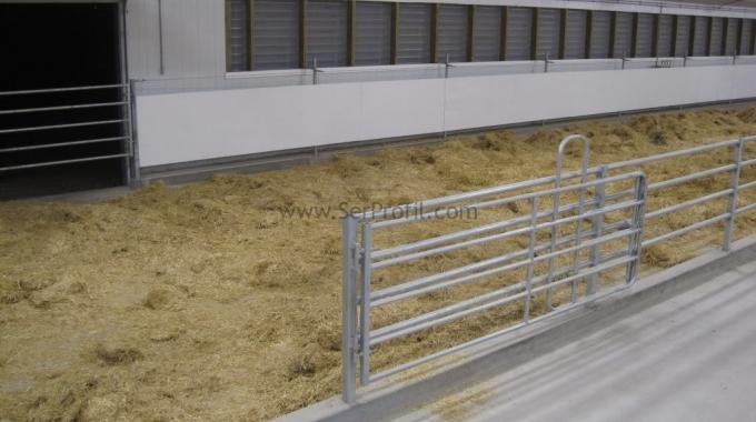 50 Büyük baş Süt ve Besi Hayvancılığı İçin Ahır Teklifi Projeleri Fiyatları