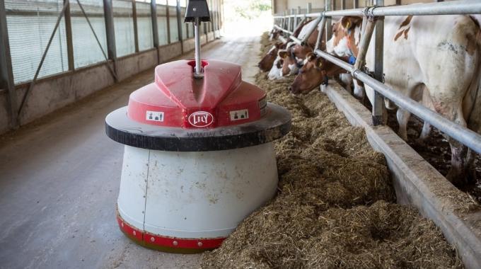 Çiftlik Projeleri 50 Başlık Süt ve Besi Sığırcılığı Projesi Anahtar Teslim Maliyeti Fiyatları