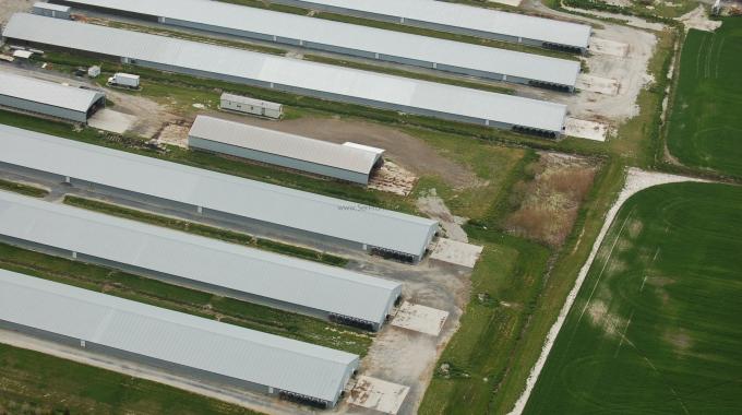 2016 Anahtar Teslim Tavuk Kümesi Çiftliği Yapan Firmalar ve Fiyatları