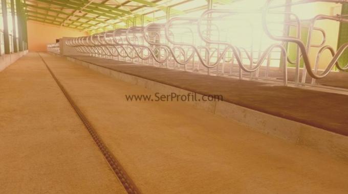 10-20-50-100-200-500 Başlık Süt Sığırcılığı Projesi Maliyeti Fiyatları Komple