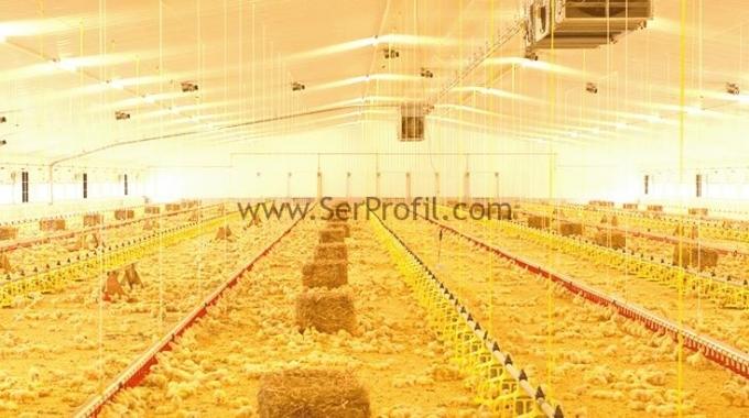 1000 Tavukluk Kümes Fiyatı, Çadır Kümes Çelik Prefabrik Kümes Fiyatları