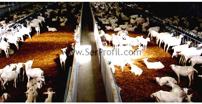 Koyun Ağılı Resmi, Küçükbaş Hayvan Barınakları Fiyatları 2017
