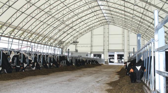 100 Başlık Besi Çiftliği Maliyeti Projeleri ve Anahtar Teslim Yapımı