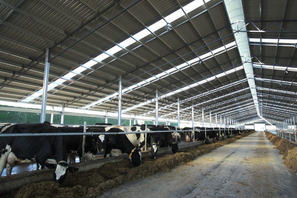 Büyükbaş Küçükbaş Hayvan Çiftliği Yapan Firmalar Anahtar Teslim Çiftlik Fiyatları, Büyükbaş Küçükbaş Hayvan Çiftliği Yapan Firmalar Anahtar Teslim Çiftlik , Büyükbaş Küçükbaş Hayvan Çiftliği Anahtar Teslim Çiftlik Fiyatları, Küçükbaş Hayvan Çiftliği Yapan Firmalar Anahtar Teslim Çiftlik Fiyatları, Büyükbaş Hayvan Çiftliği Yapan Firmalar Anahtar Teslim Çiftlik Fiyatları, hayvan çiftliği yapan firmalar, anahtar teslim çiftlik fiyatları, anahtar teslim çiftlik yapan firmalar, çiftlik inşaatı yapan firmalar, anahtar teslim süt çiftliği fiyatları, çiftlik kurulumu maliyeti, anahtar teslim çiftlik kurulumu, besi çiftliği yapan firmalar, çiftlik kurulumu yapan firmalar,