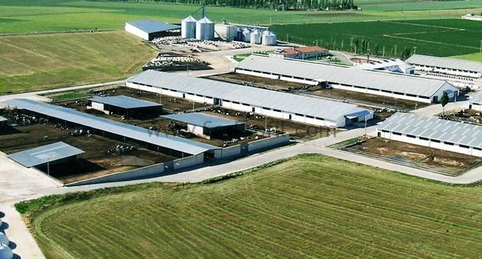 Et ve Süt Hayvancılığı TKDK-IPARD Projeleri Yapım Fiyatları Danışmanlık İşleri