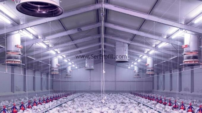 1000 Tavukluk Çadır Prefabrik Çelik Sandviç Panelli Kümes Maliyeti