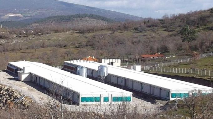 Çadır Kümes Satışı 2017, Çadır Kümes Yapımı, Çadır Kümes Fiyatları