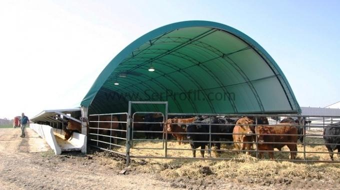300 Başlık Besi Sığırı Çadırı, Çadır Ahır Fiyatları