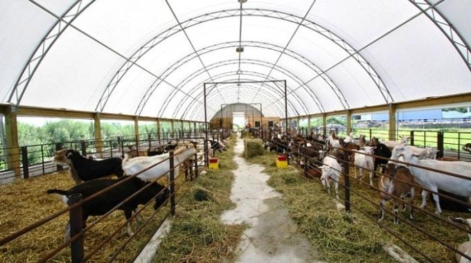 2017 Besi Çadırı Toptan Satış ve Kurulum Fiyatları