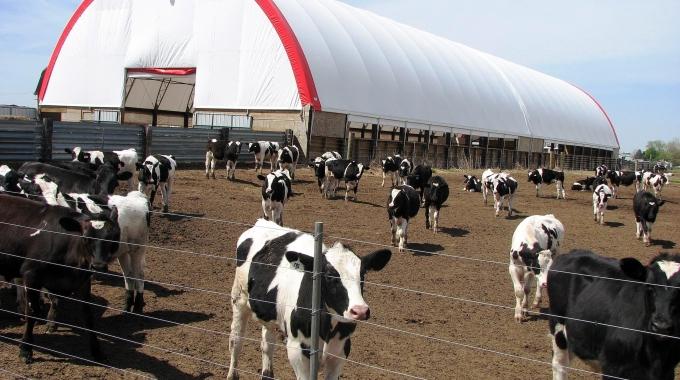 Çiftlik Ruhsatı Maliyeti, Ahır Projeleri, Hayvancılık Çiftlik İnşaatları Fiyatları