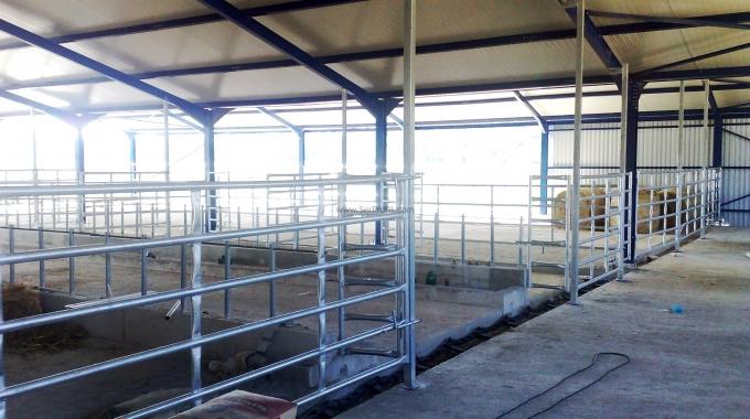 Örnek Küçükbaş Koyun Keçi Çiftliği Proje Yapım Uygulamaları ve Başarı Hikayeleri