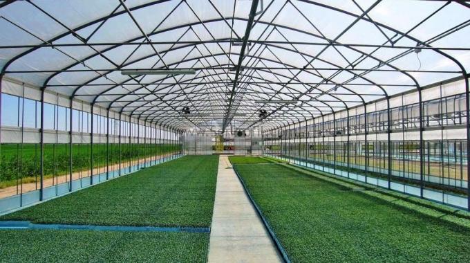 Yüksek Tünel Naylon Sera Projeleri Modelleri Yapım Kurulum Fiyatları