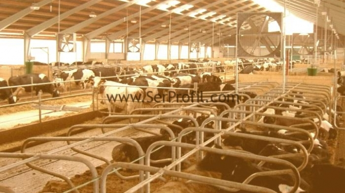 Anahtar Teslim Büyükbaş Hayvan Tesisi İşletme Ahır Çiftlik Projeleri Kurulumu Fiyatları