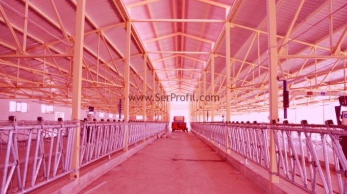 MODERN 120 Büyükbaş Süt ve Besi Hayvan Çiftliği Projeleri İnşaat Maliyeti Fiyatları 2017