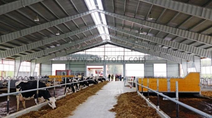 100 Büyükbaşlık Süt Sığırcılığı Projesi İnşaat Ekipman Fiyatları