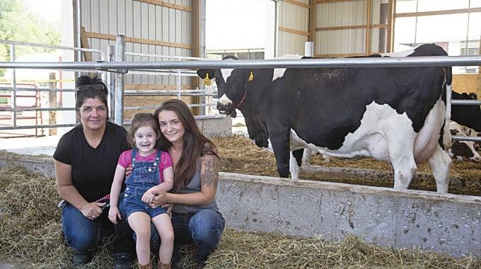 100 Büyükbaşlık Süt Besi Sığırı Yetiştirilmesi Projesi Ahır Çiftlik Fiyatları 2017
