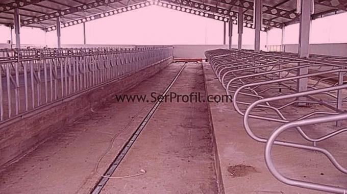 1000 Başlık Açık Besi Çiftliği, Açık Besi Ahırı Modelleri Fiyatları