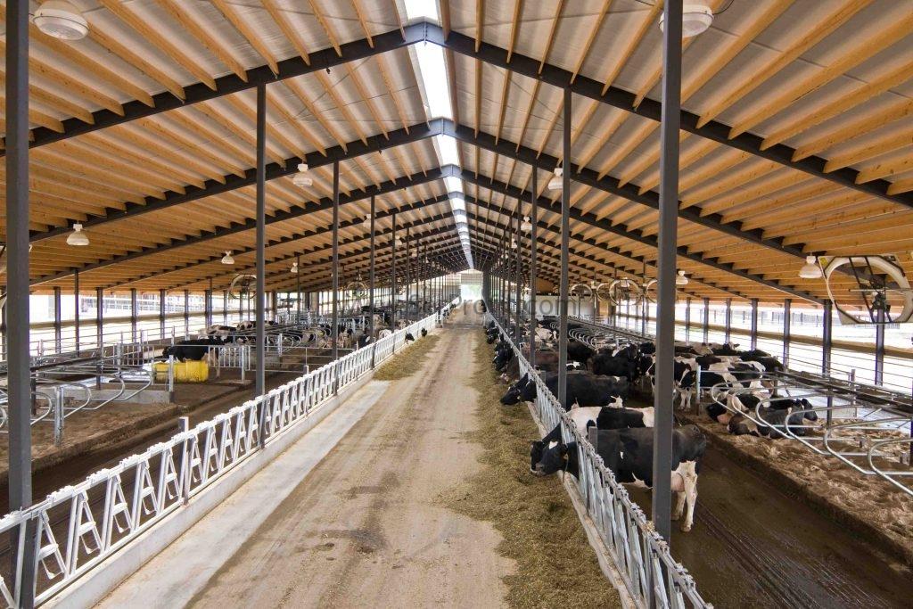 devlet destekli çiftlik, devlet destekli hayvancılık kredisi nasıl alınır, hayvancilik hibe desteği, büyükbaş hayvancılık hibe desteği 2017, hayvancılık hibe destekleri 2017, hayvancılık hibeleri 2017, büyükbaş hayvancılık yapmak istiyorum, küçükbaş hayvancılık kredisi şartları, ziraat bankası hayvancılık kredisi 2017,