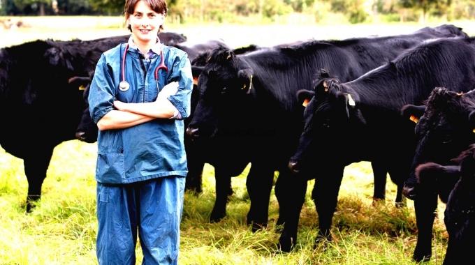 Hazır Çiftlik Projeleri ve Anahtar Teslim Yapım Fiyatlarımız