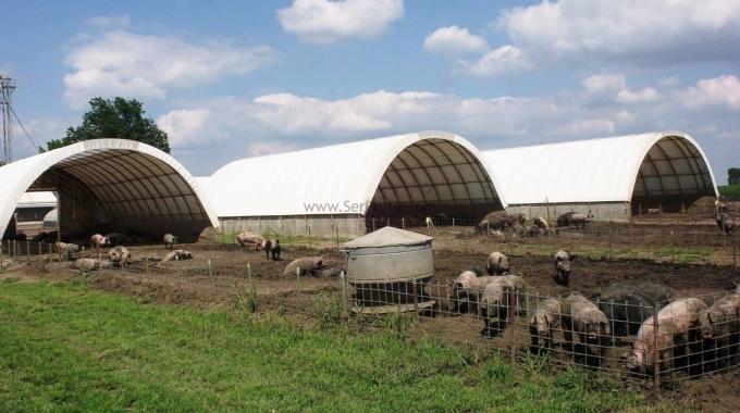 100 Büyükbaş Hayvan Besi Süt Ahır Çiftlik Projesi İnşaat Kurulum Maliyet Fiyatları