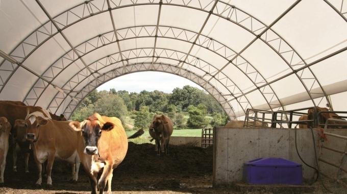 Hazır Ahır Çiftlik Projeleri, Büyükbaş Küçükbaş Hayvan Çiftliği Yapım Fiyatları