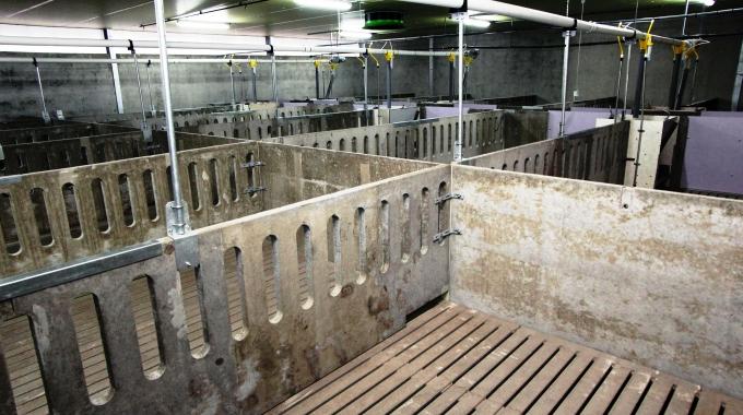 Modern Hayvan Çiftlikleri Ahır Proje Yapı İnşaat Mimarlık Mühendislik