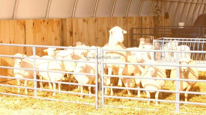 2017 Koyun Keçi Modern Çiftlik Projeleri Yapım Fiyatları