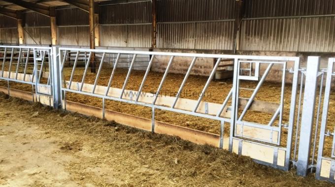 100 Başlık Süt Sığırcılığı ve Besi İşletmesi Çiftlik Ahır Ön Fizibilite Çalışması