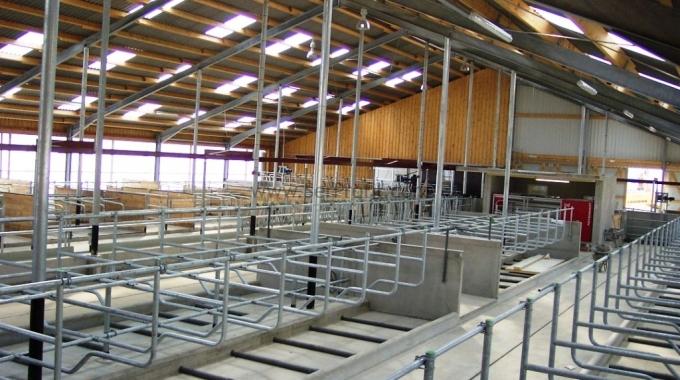 Prefabrik ÇELİK Besi Hayvan Çiftliği Kurulum Maliyeti Anahtar Teslimi