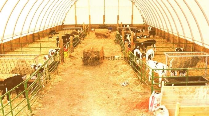 Modern ÖRNEK Küçükbaş Hayvan Ahırları Koyun Keçi Çiftlikleri Projeleri