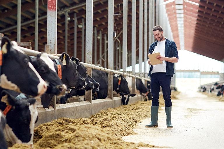 Ziraat Bankası Sera ve Hayvancılık Kredileri 2019